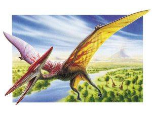 A Pterodactyl