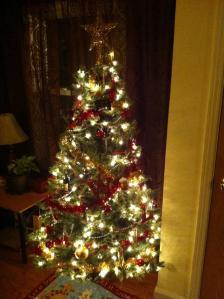 Will & Lindsay's Christmas Tree