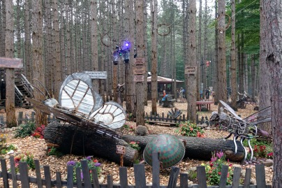 ElectricForest_20170627037