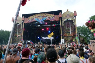 ElectricForest_20170627074