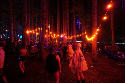 ElectricForest_20170627094