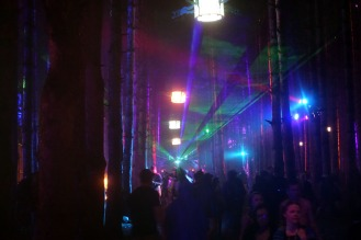 ElectricForest_20170627112