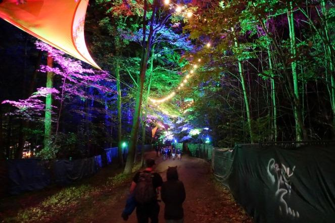 ElectricForest_20170627113