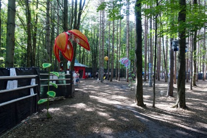 ElectricForest_20170627183