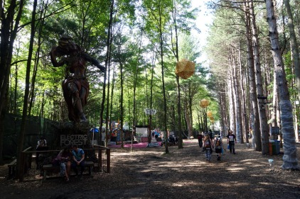 ElectricForest_20170627185