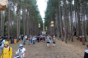 ElectricForest_20170627195