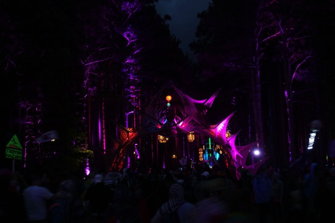 ElectricForest_20170627208