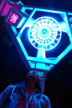 ElectricForest_20180627019