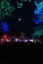 ElectricForest_20180627077